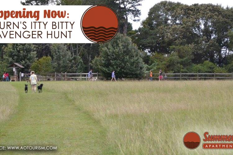 Happening Now: Auburn's Itty Bitty Scavenger Hunt